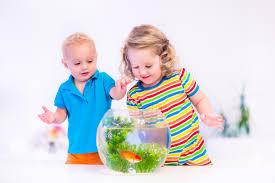 fish tanks for kids