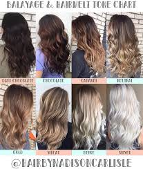 hair color tone chart balayage u0026 color specialist