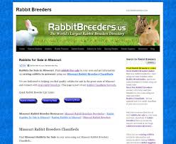 missouri rabbit breeders usa rabbit breeders