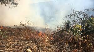 investigators nanaimo brush fire person caused nanaimonewsnow