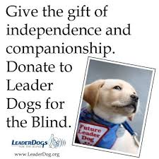 Leader Dogs For The Blind Rochester Michigan 78 Images About Organizations On Pinterest Puppys For The And
