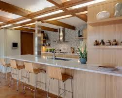 1960s Kitchen High End Kitchen Remodel Houzz