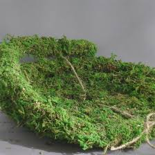 garland moss vine small wholesale flowers and supplies