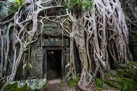 Top 10 Abandoned Places In The World Abandoned Places Reclaimed By Nature Photos Architectural Digest