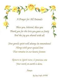pet prayer a prayer for a deceased pet awesomeanimalz