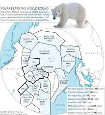 Baffin Bay On World Map by Polar Bear Numbers Set To Fall Nature News