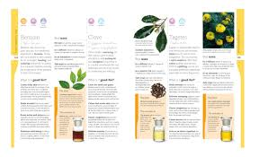essential oils all natural remedies and recipes for your mind