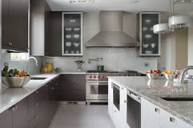 Kitchen Cabinet Glass Door Replacement Frosted Glass Door Kitchen Cabinets Arianoarchitettura Com