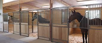 Barn Designs For Horses Equestrian Barns U0026 Architecture Equine Facility Design