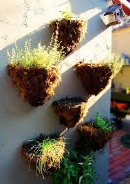 best 25 wall herb gardens ideas on pinterest vertical herb