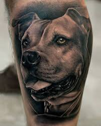 terrier tattoo greyline tattoo