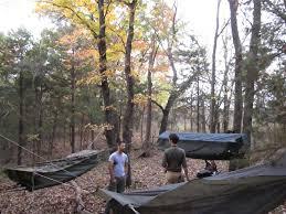 jungle hammock sojourn explorers