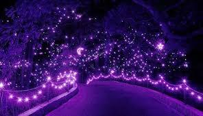 Norfolk Botanical Garden Lights 19th Annual Lights Show At Norfolk Botanical Garden
