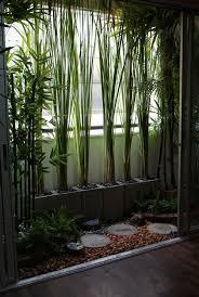 Best  Interior Garden Ideas On Pinterest Atrium Garden House - Interior garden design ideas