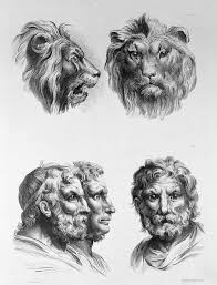what would i look like with different hair what would humans look like if they evolved from different animals