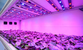 best led grow lights high times 2017 led grow lights for farming sxu hero