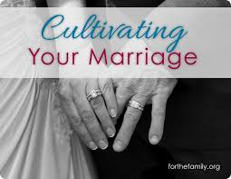 Happy Wedding Love U0026 Relationship 109 Best Love And Marriage Images On Pinterest Happy Marriage