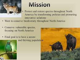 defenders of wildlife protect and restore species throughout