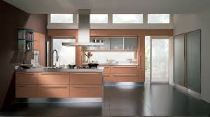 zebra wood kitchen cabinets aattractive kitchen design with eco friendly kitchen cabinetry and