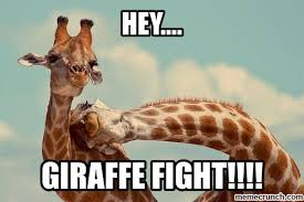Meme Giraffe - meme giraffe 28 images at the end of leg day workouts you re the
