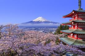 flight deal u s to japan for 500 during cherry blossom season