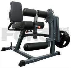 leg extension free weight holistic gym equipment