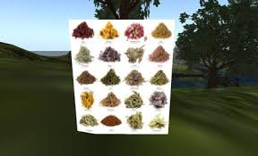 herb chart second life marketplace herb chart poster