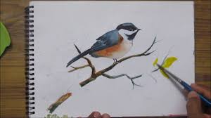 watercolor tutorial chickadee how to paint a bird in watercolor watercolor painting for beginners