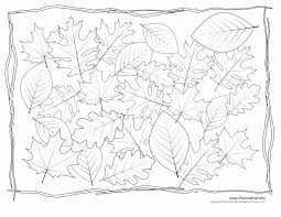 eastern black oak leaf coloring page printable pages click the