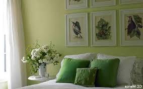 chambre verte et blanche décoration chambre verte 76 versailles 11070229 noir ahurissant