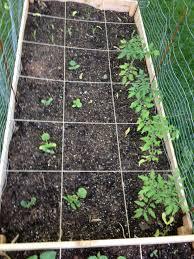 st louis square foot gardening plan u2013 my square foot garden