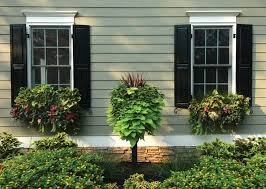 19 best window boxes images on pinterest wall planters window