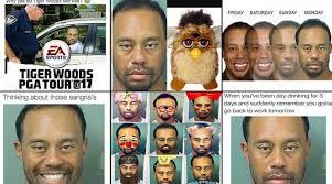 Tiger Woods Meme - tiger woods best mugshot memes