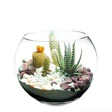 Where To Buy Glass Vases Cheap Fish Bowls Vases U2013 Www Affirmingbeliefs Com