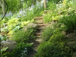 nature within cherish the moment nature paths life u0027s paths