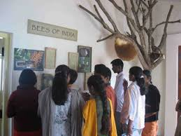 home district of the nilgiris district tamilnadu india