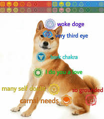 Doge Pronunciation Meme - chakra doge the left hand path pinterest doge and memes