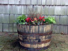 succulents in a whiskey barrel my garden pinterest whiskey