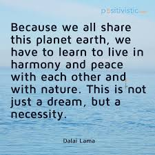 quote on how we should live in peace and harmony dalai lama