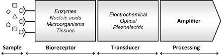 electrochemical methods for the in vitro assessment of drug