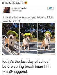 School Today Meme - 25 best memes about last day of school last day of school memes