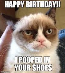 Birthday Meme Cat - grumpy cat reverse meme imgflip