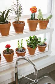 Window Sill Garden Inspiration Window Ledge Plant Shelf A Beautiful Mess