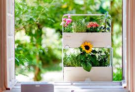 window planters indoor brilliant best 20 indoor window boxes