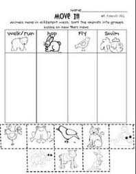 animal body coverings animals types of animals and first grade