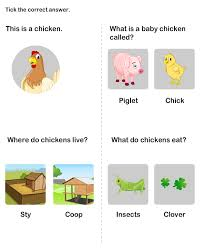 animals and their homes worksheet animals and their babies worksheet
