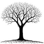Bare Tree Royalty Free Cliparts, Vectors, And Stock Illustration ...