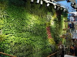 270 best vertical gardens and green roofs images on pinterest
