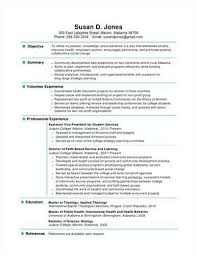 It Security Resume Example It Security Careerperfectcom