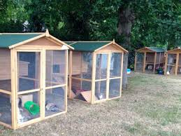 Pet Hutch Accommodation Petpals Holiday Boarding